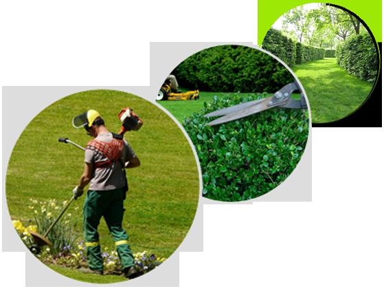 Espaces verts dordogne perigord ressources Tarif entretien espace vert particulier